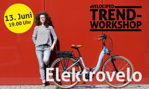 Trend-Workshop Elektrovelo